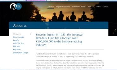 официальный сайт ЕФК
