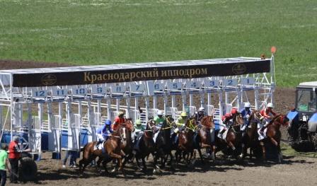 Дата 25.04.2015 Краснодарский ипподром