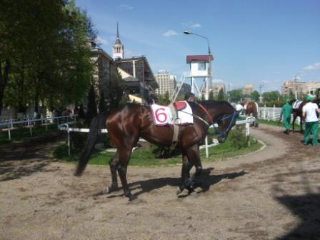 Икарий -второе место в Призе Открытия