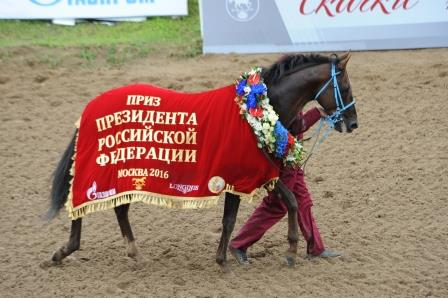 Победитель Приза Президента РФ 2016 Тайгер Кид