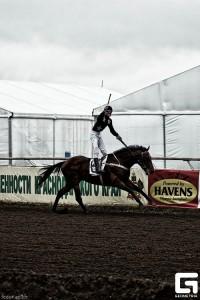 скачки, лошади, Атташе финиширует в скачке