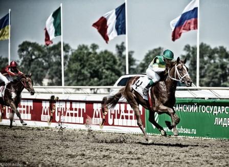 скачки, ипподром, Краснодар, лучшие лошади