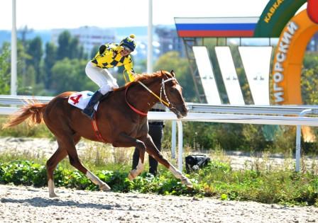победитель Осеннего приза в Пятигорске