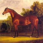 Дега. Скаковая лошадь