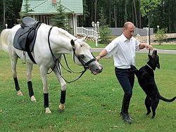 Президент с лошадью и собакой