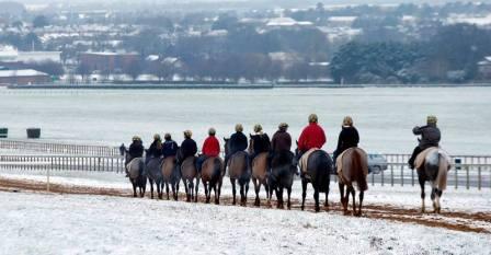 Зимний тренинг скаковых лошадей