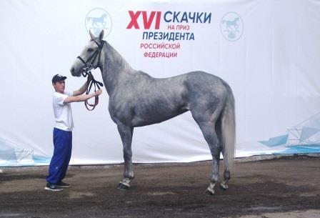Кобыла Инанна (Серебряный Бор - Инкрустация)