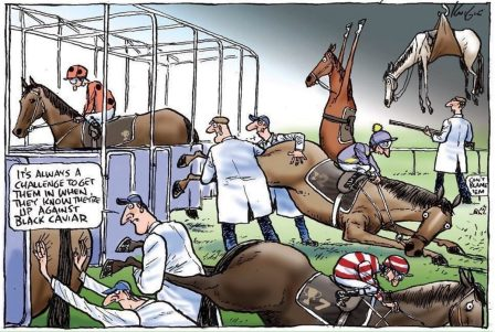 Карикатура на наше коневодство