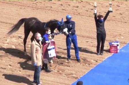 Пробный приз для лошадей арабской породы