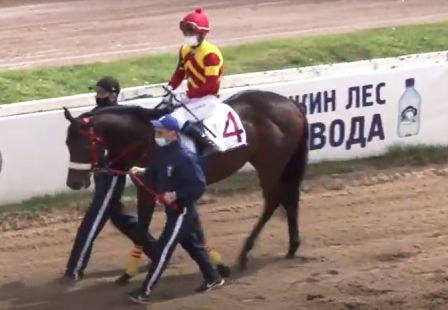 Фемистокл и жокей Денис Суханов
