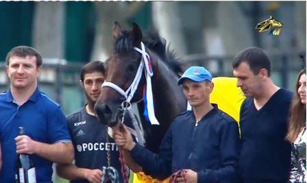Лошадь Года