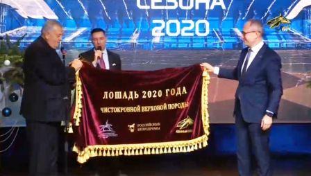 Лошадь года 2020